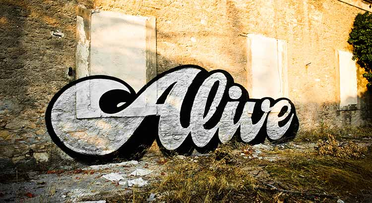 "A large curvsive graffiti spelling ""Alive"", painted on a brick wall"