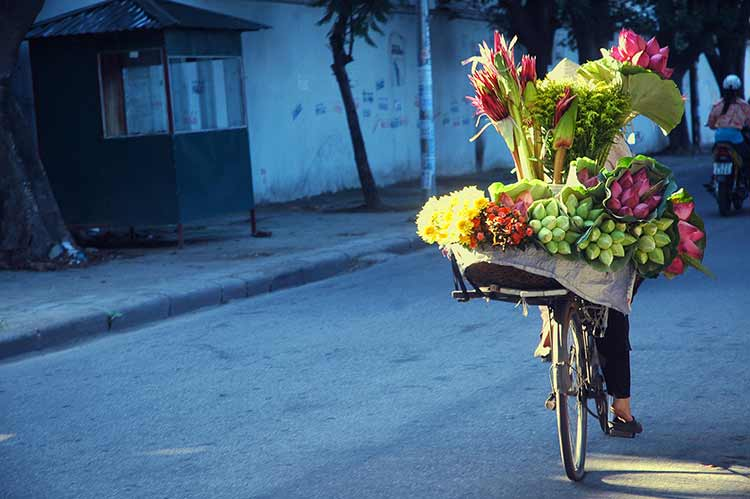 A bike carrying yellow flowers on a blue-toned street