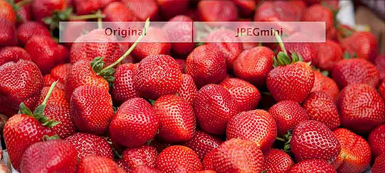 JPEGmini comparison of image compression
