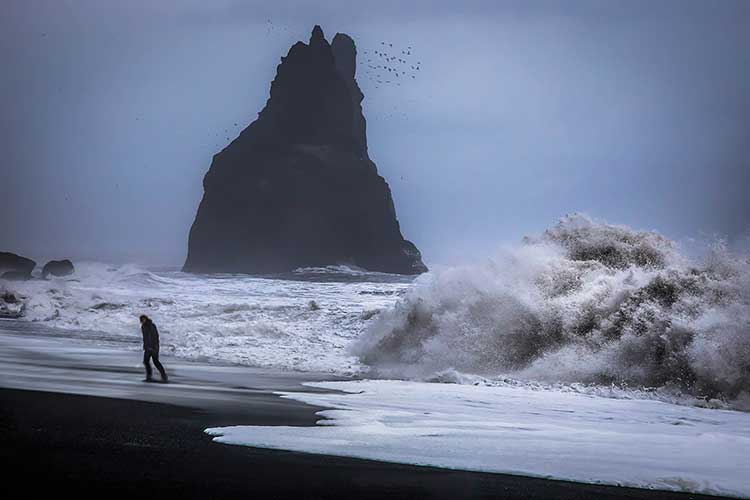 A dark figure facing away from a stormy, wave-tossed beach and a large rock surrounded by flying birds