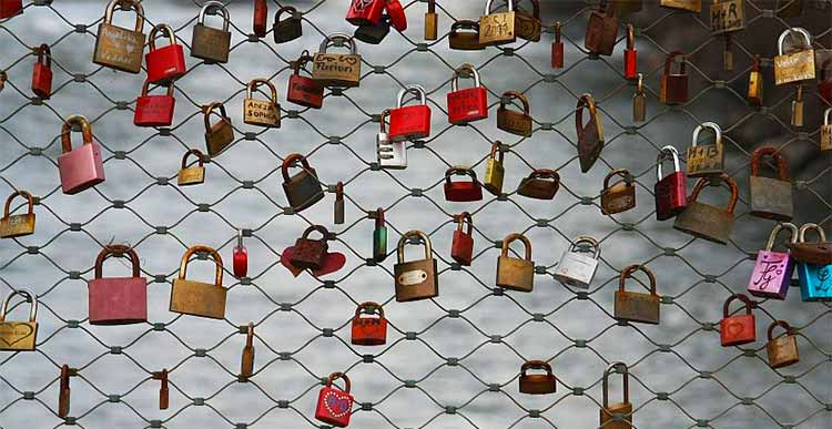 Chainlink fence with many padlocks on it