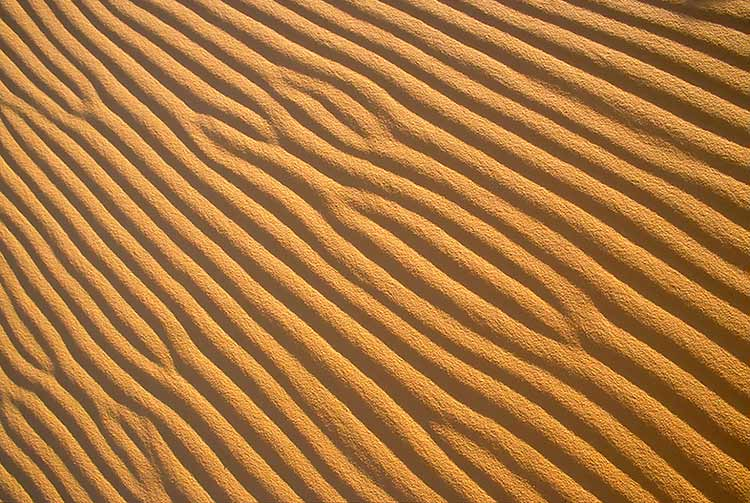 A pattern of wind-rippled sand